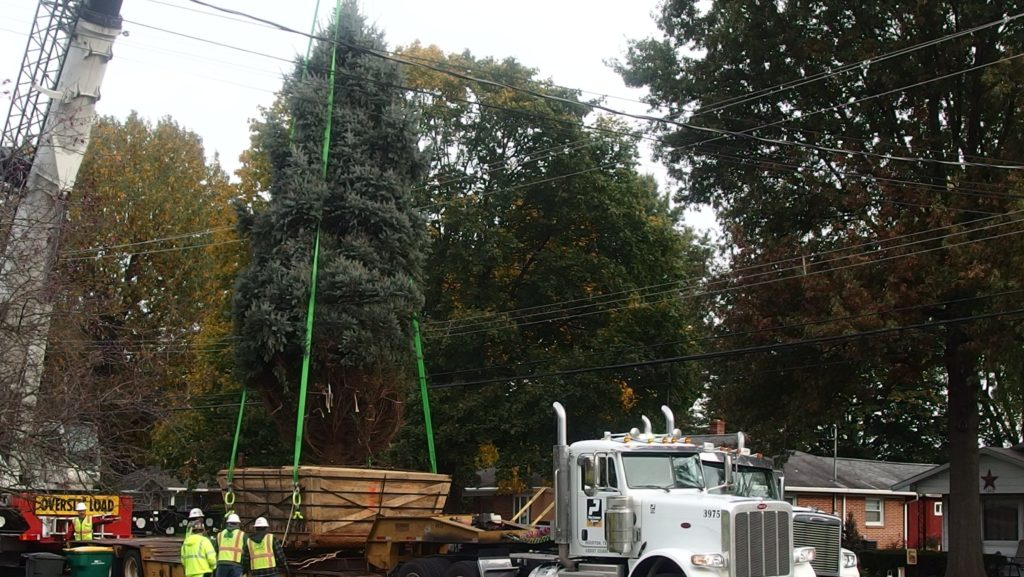 National Christmas Tree Mystery Solved, Palmyra Donors