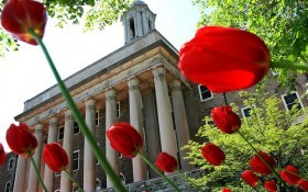 Tulips Strategically Placed at Old Main
