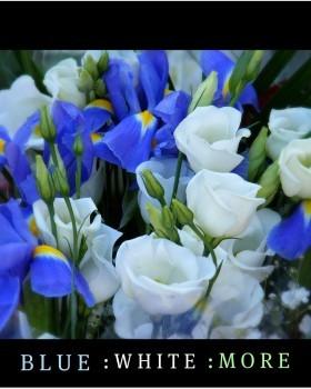 blue white more