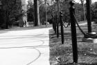 Fence Chain Shadow