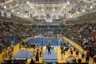 Gymnastics NCAAs