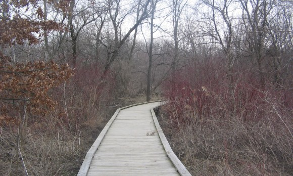 Millbrook_Marsh_Nature_Center