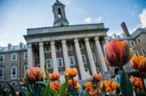 Old Main Flowers Stock Spring