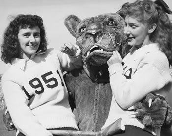 penn state history lessons the nittany lion