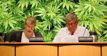Borough Council Marijuana Ordinance